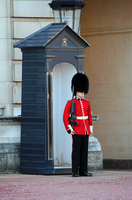 London Calling Underwriting Opportunities Beefeater Guard Underwriter